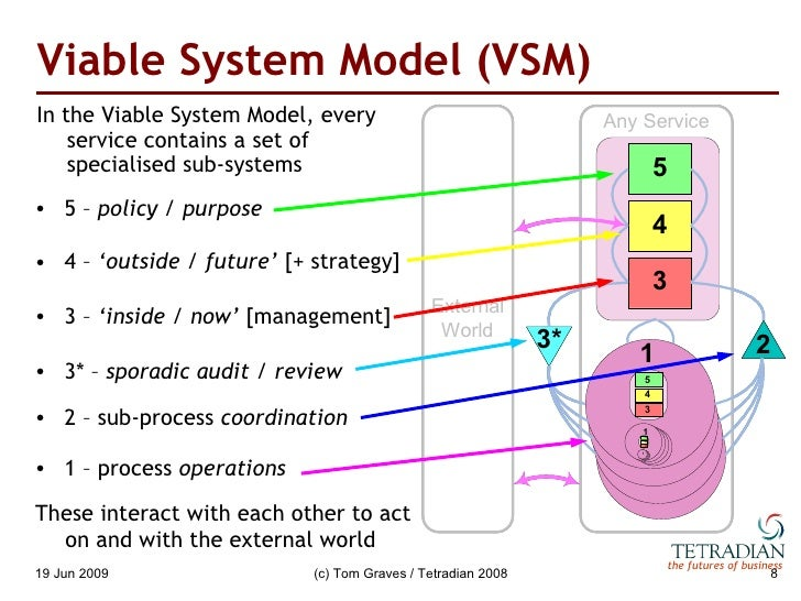 viable systems model vsm and soft systems model ssm essay