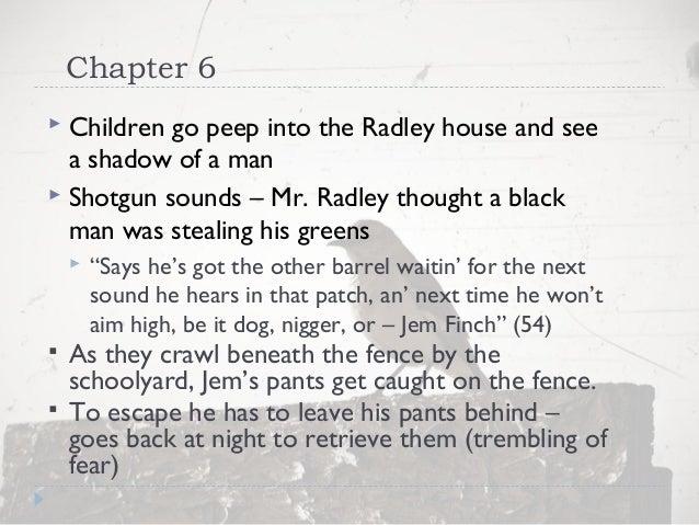 to kill a mockingbird chapter 6 11 summary