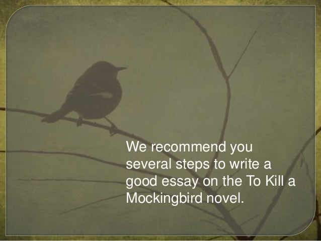 mockingbird essays Examine the character of atticus and comment on whether you believe him to be a heroin the novel 'to kill a mockingbird  kill a mockingbird by harper lee essays:.