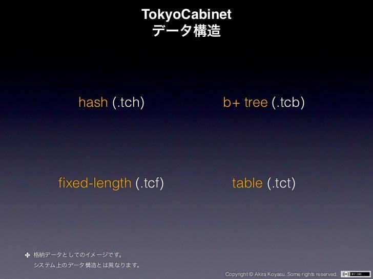 TokyoCabinet       hash (.tch)          b+ tree (.tcb)    fixed-length (.tcf)           table (.tct)✤                      ...