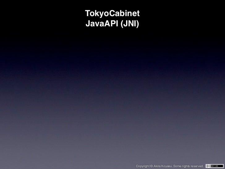 TokyoCabinetJavaAPI (JNI)            Copyright © Akira Koyasu. Some rights reserved.