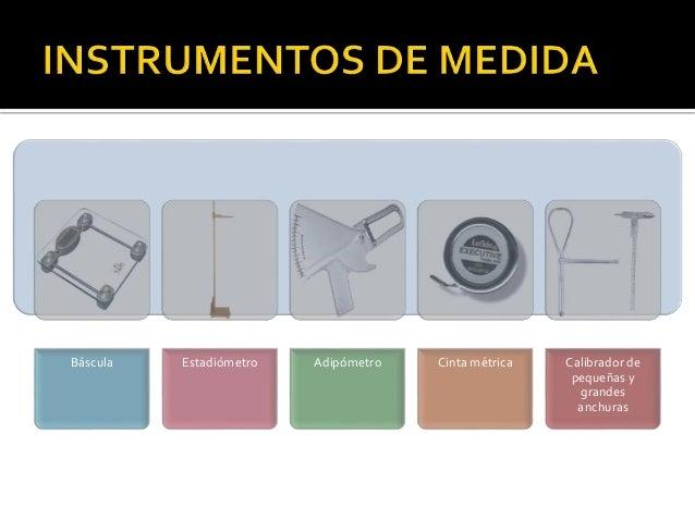 Antropometr a m todo isak for Cuales son medidas antropometricas