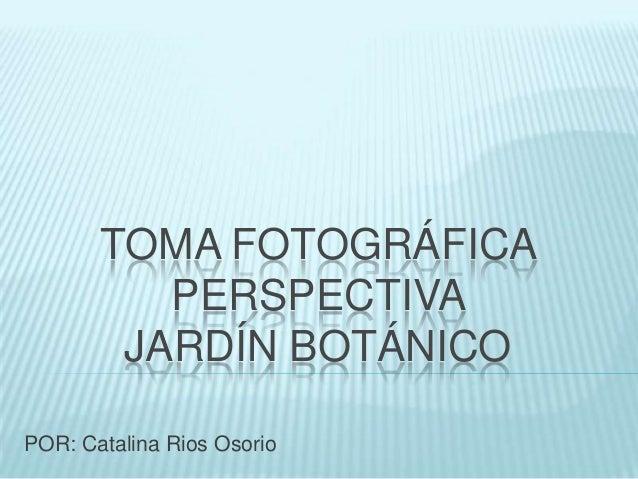 TOMA FOTOGRÁFICA PERSPECTIVA JARDÍN BOTÁNICO POR: Catalina Rios Osorio