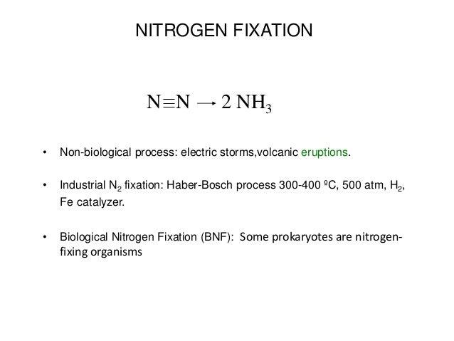 FIJACION BIOLOGICS DE NITROGENO EBOOK DOWNLOAD
