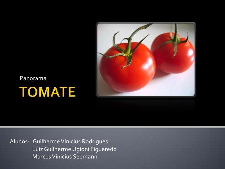 TOMATE<br />Panorama<br />Alunos:   Guilherme Vinicius Rodrigues<br />Luiz Guilherme UgioniFigueredo<br />Marcus Viniciu...