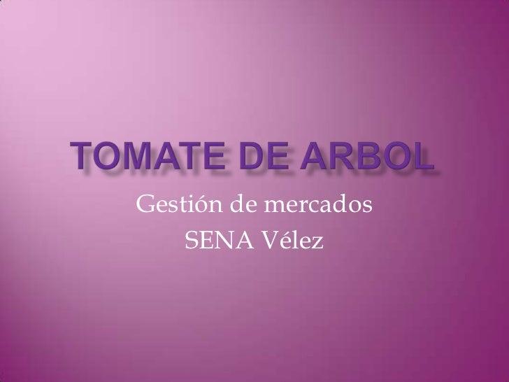 TOMATE DE ARBOL<br />Gestión de mercados<br />SENA Vélez<br />