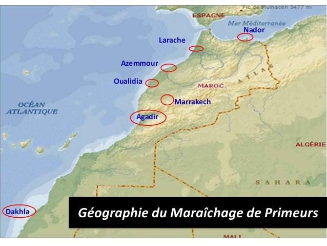 Tomate du Maroc - Faits et chiffres -Zahidi Mohammed  Slide 3