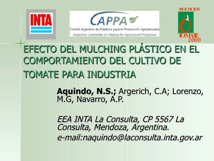 EFECTO DEL MULCHING PLÁSTICO EN EL COMPORTAMIENTO DEL CULTIVO DE TOMATE PARA INDUSTRIA   Aquindo, N.S.;  Argerich, C.A; Lo...