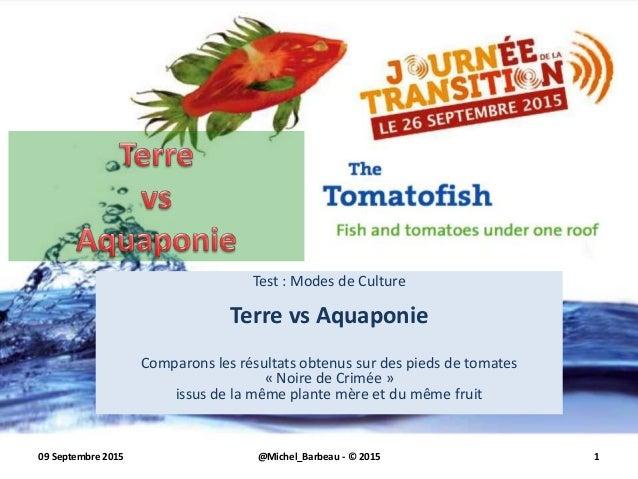 Test : Modes de Culture Terre vs Aquaponie Comparons les résultats obtenus sur des pieds de tomates « Noire de Crimée » is...