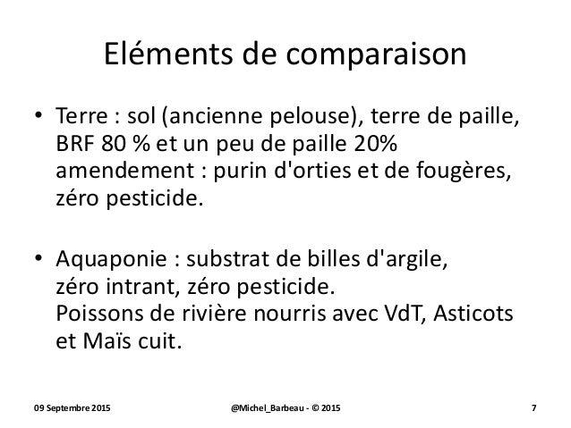 Tomates comparaison mode de culture terre vs aquaponie for Purin de fougeres taupin