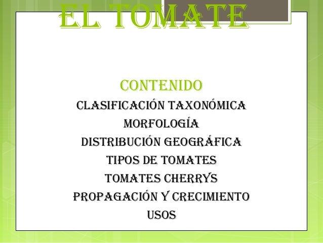 EL TOMATE      CONTENIDOCLAsIfICACIóN TAxONóMICA        MOrfOLOgíA DIsTrIbuCIóN gEOgráfICA     TIpOs DE TOMATEs     TOMATE...