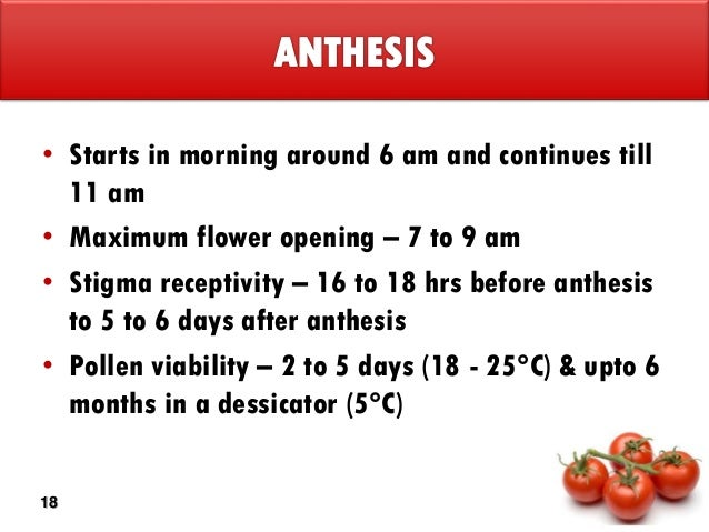 days after anthesis Effects of high temperature after anthesis on starch granules in environments where temperatures rise above 30°c during the first 14 days after anthesis.