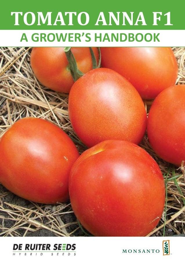 A GROWER'S HANDBOOK TOMATO ANNA F1