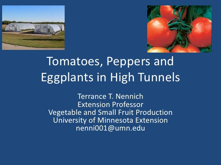 Tomatoes, Peppers andEggplants in High Tunnels         Terrance T. Nennich         Extension Professor Vegetable and Small...