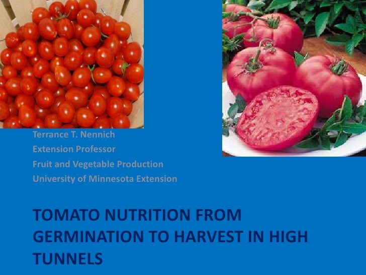 Terrance T. NennichExtension ProfessorFruit and Vegetable ProductionUniversity of Minnesota ExtensionTOMATO NUTRITION FROM...