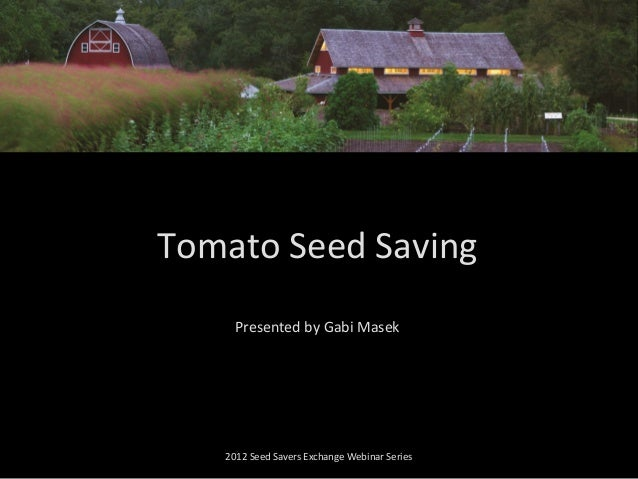 Presented by Gabi Masek 2012 Seed Savers Exchange Webinar Series Tomato Seed Saving