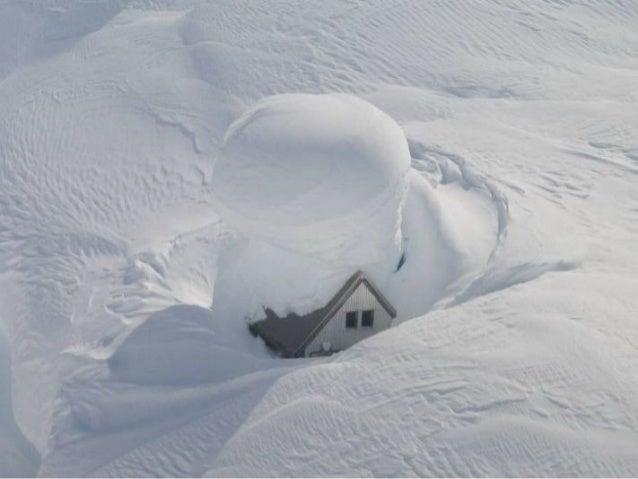Tombe la neige-_adamo