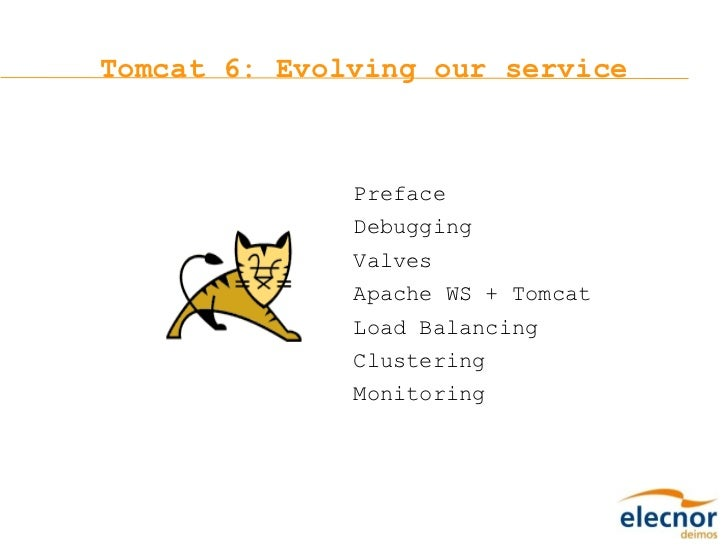 Tomcat 6: Evolving our service Preface Debugging Valves Apache WS + Tomcat Load Balancing Clustering Monitoring