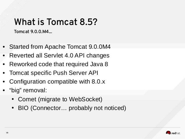 Tomcat next