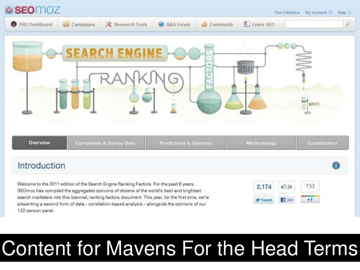 Content for Mavens For the Head Terms