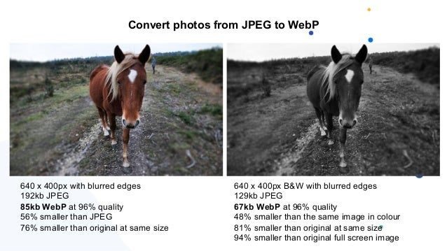 640 x 400px with blurred edges 192kb JPEG 85kb WebP at 96% quality 56% smaller than JPEG 76% smaller than original at same...