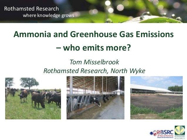 Ammonia and greenhouse gas emissions – who emits more? Tom