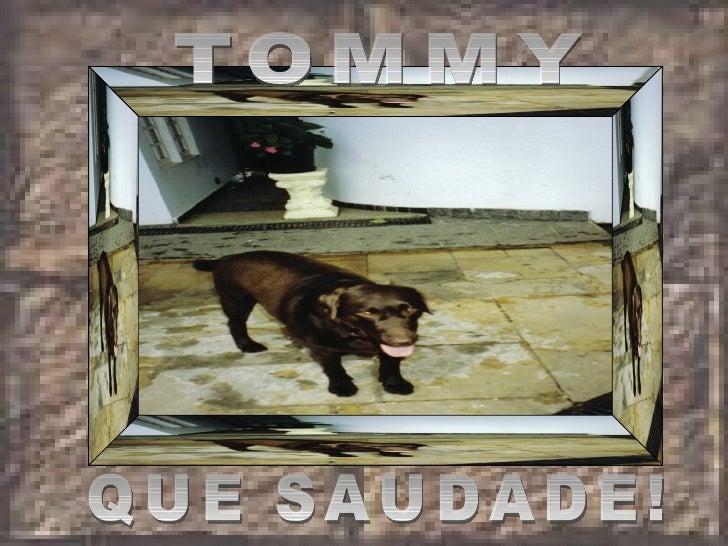 TOMMY QUE SAUDADE!