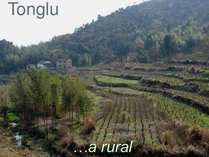 Tonglu         …a rural