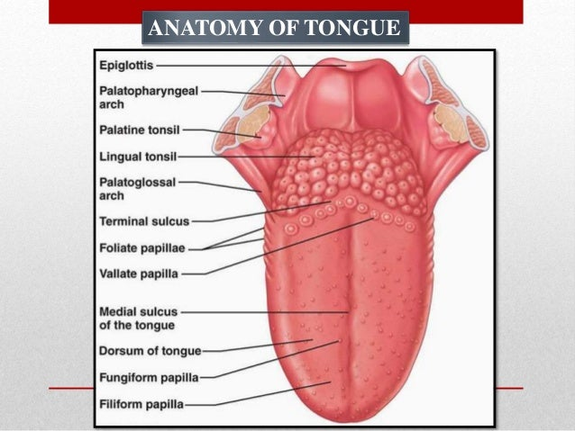 Tongue disorders
