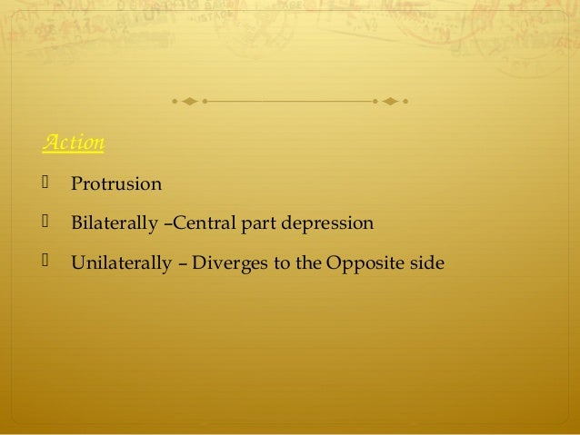 Action  Protrusion  Bilaterally –Central part depression  Unilaterally – Diverges to the Opposite side