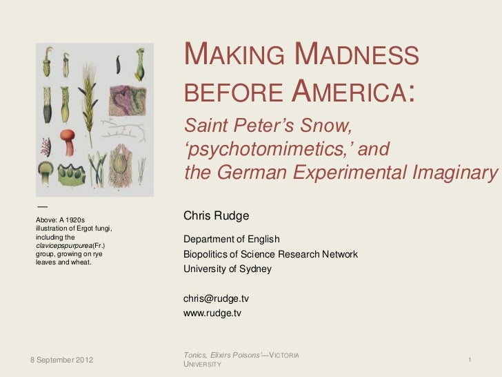 """MAKING MADNESS                                BEFORE AMERICA:                                Saint Peter""""s Snow,          ..."""