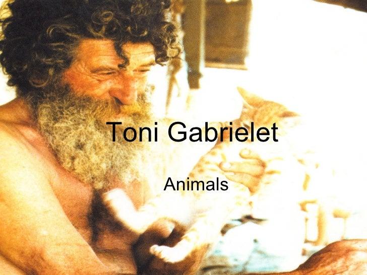 Toni   Gabrielet Animals