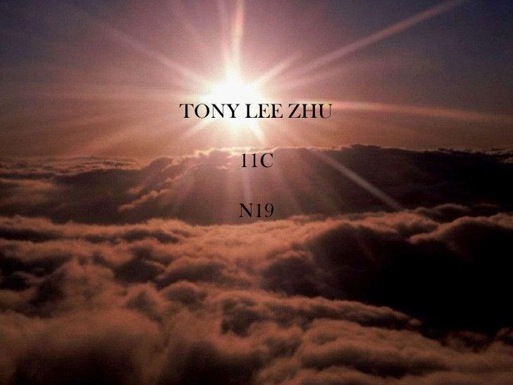 TONY LEE ZHU    11C    N19
