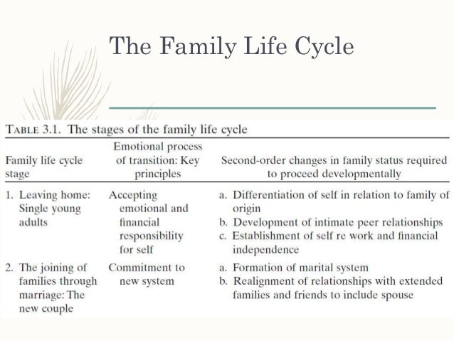 family life cycle beginning stage