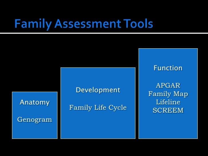 Tools in Family Assessment Slide 2