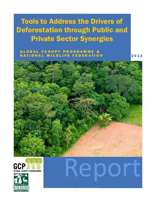 Tools to Address the Drivers of Deforestation through Public and Private Sector Synergies G L O B A L C A N O P Y P R O G ...