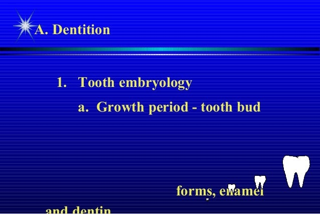 Tooth morphology and Intra oral anatomy