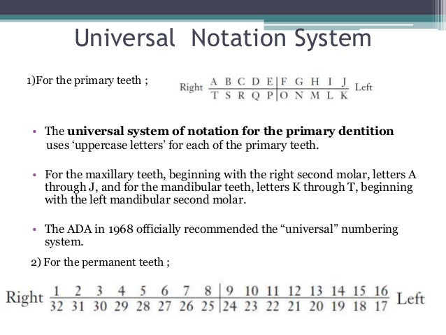 Tooth numbering diagram pdf electrical work wiring diagram tooth numbering system rh slideshare net dentist tooth number chart tooth chart printable full sheet ccuart Gallery