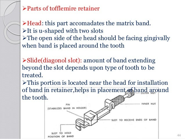 Parts of tofflemire retainer Head: this part accomadates the matrix band. It is u-shaped with two slots The open side ...