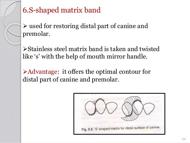 6.S-shaped matrix band  used for restoring distal part of canine and premolar. Stainless steel matrix band is taken and ...