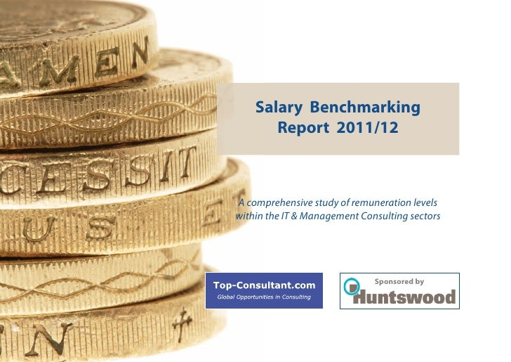 Salary Benchmarking       Report 2011/12A comprehensive study of remuneration levelswithin the IT & Management Consulting ...