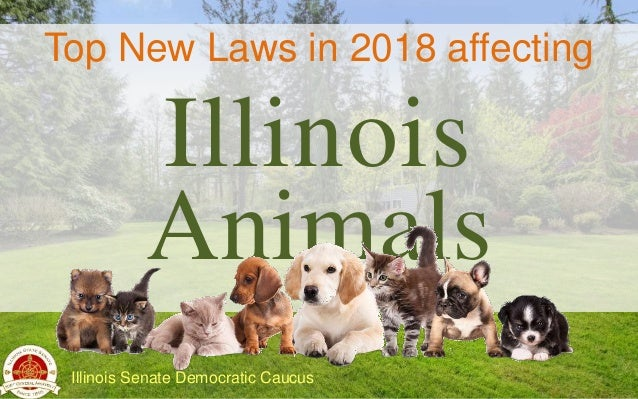 Top New Laws in 2018 affecting Illinois Animals Illinois Senate Democratic Caucus