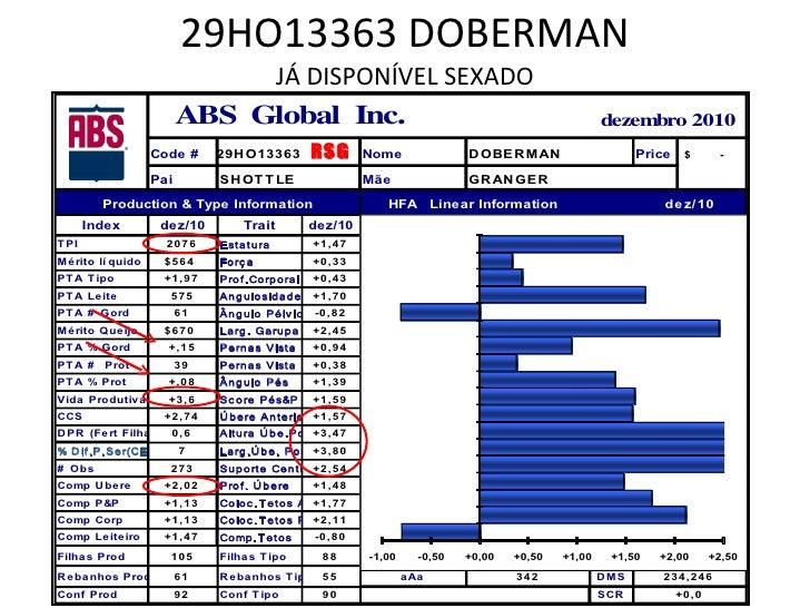 29HO13363 DOBERMAN JÁ DISPONÍVEL SEXADO