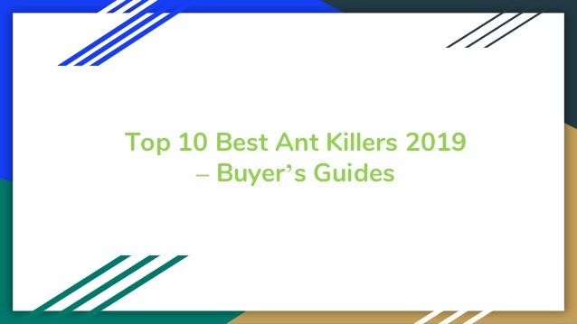 Top 10 Best Ant Killers 2019 – Buyer's Guides