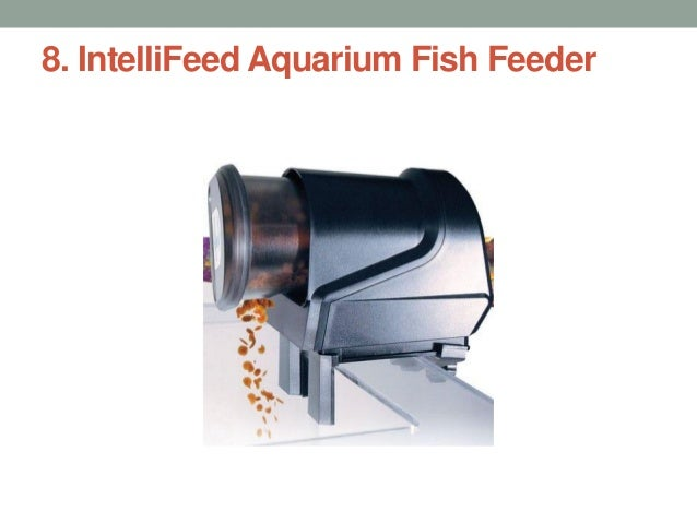 IntelliFeed Fish Feeder