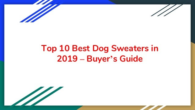 Top 10 Best Dog Sweaters in 2019 – Buyer's Guide