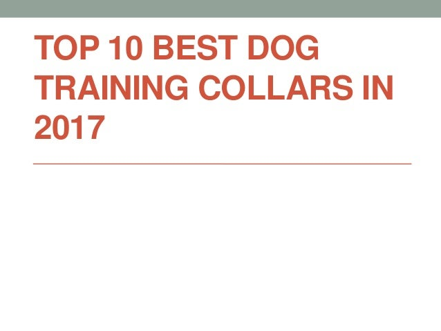 TOP 10 BEST DOG TRAINING COLLARS IN 2017