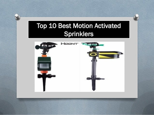 Top 10 best motion activated sprinklers