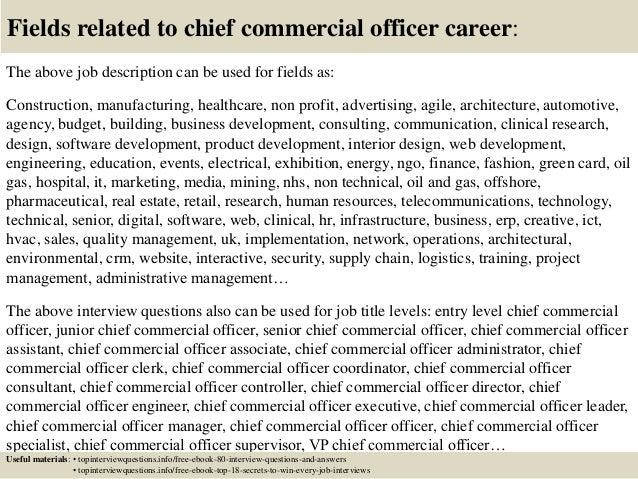 chief administrative officer job description pdf
