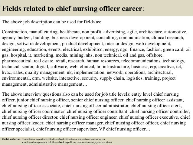 17 fields related to chief nursing officer career the above job description